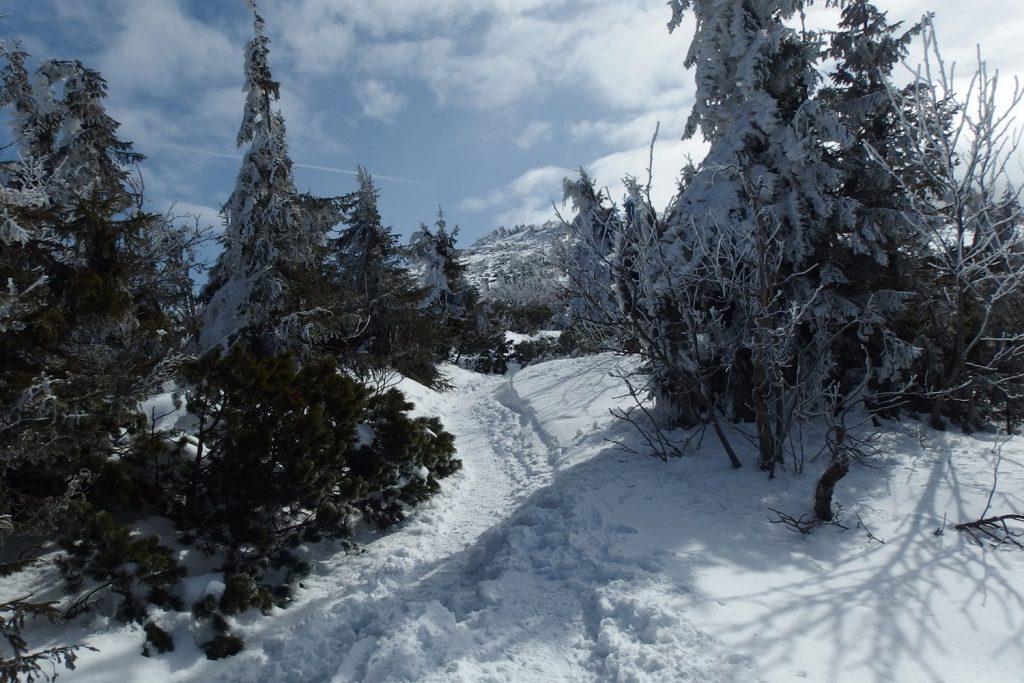 babia góra poland