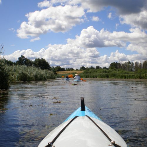 river in podlasie poland - kayak