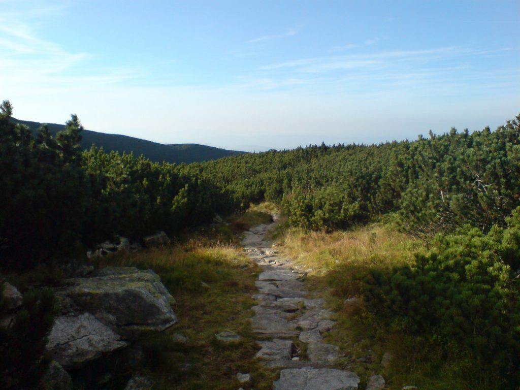 trail to murowaniec hut