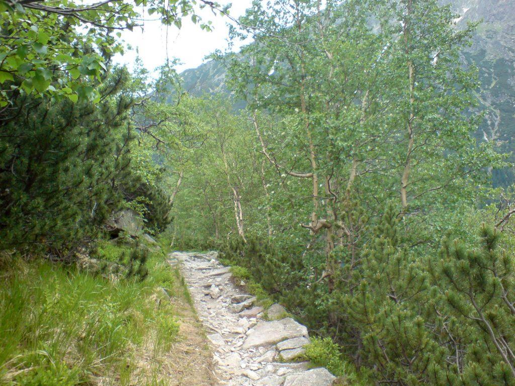 trail to morskie oko tatra mountains poland