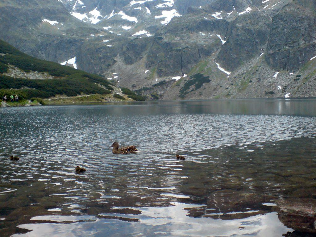 czarny staw tatra mountains poland
