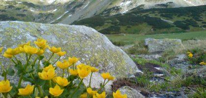 tatra mountains poland
