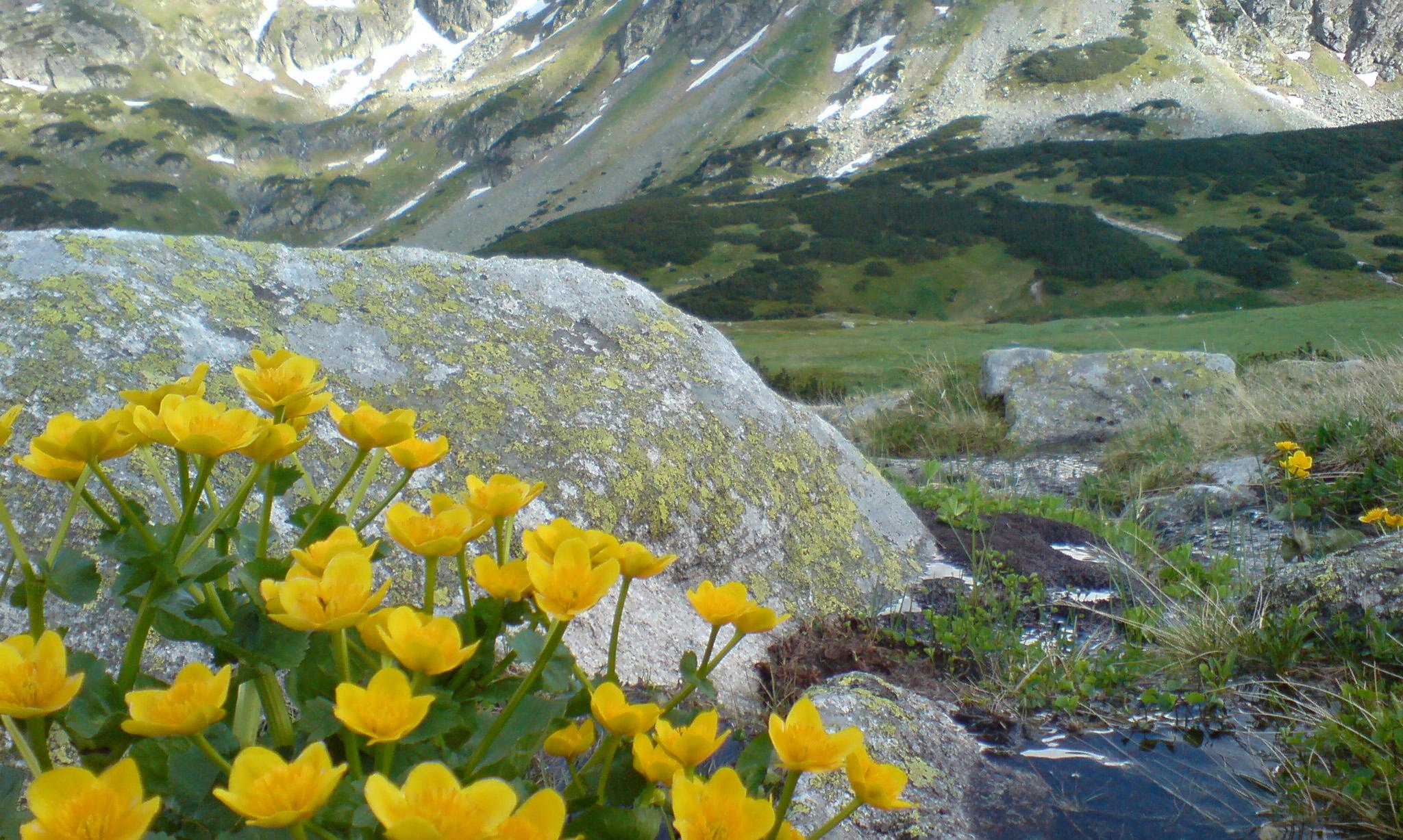 Spanie pod schroniskiem, czyli weekend w Tatrach