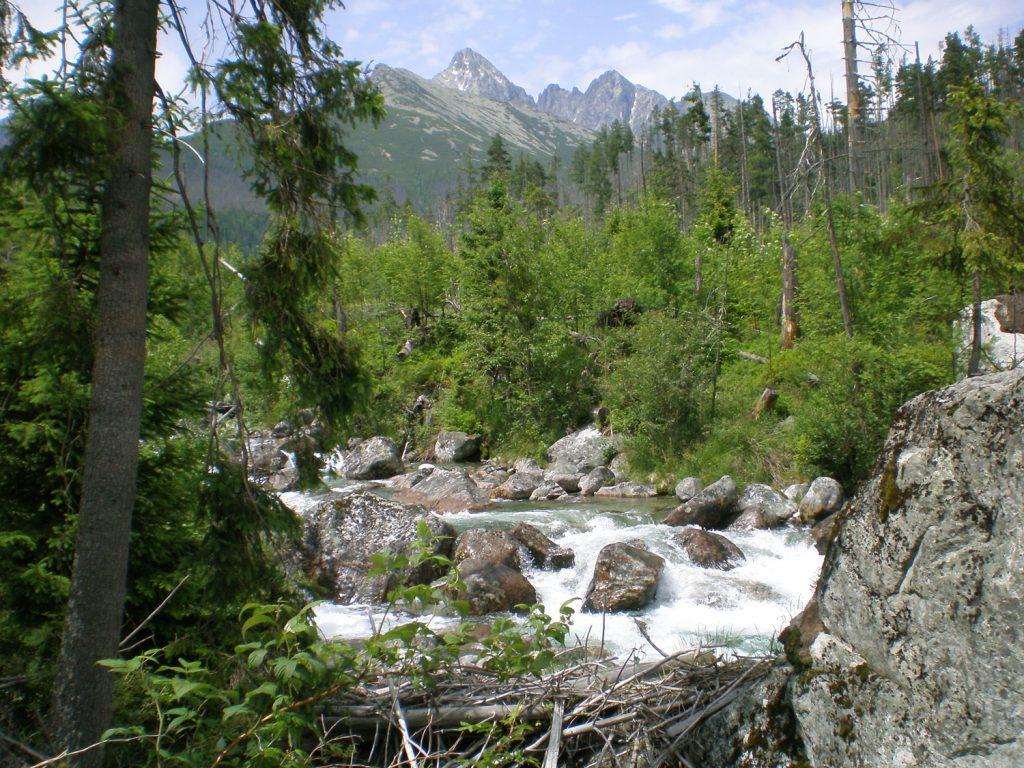tatra mountains slovakia studena dolina
