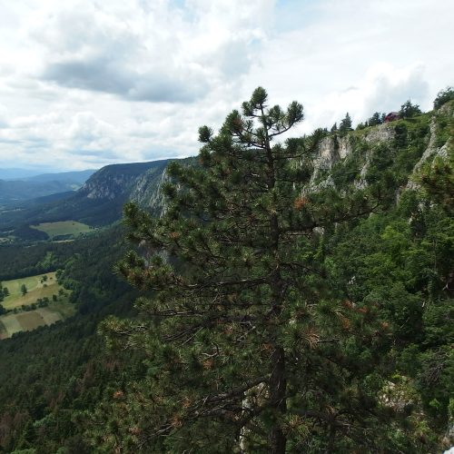 hohe wand mountains in austria