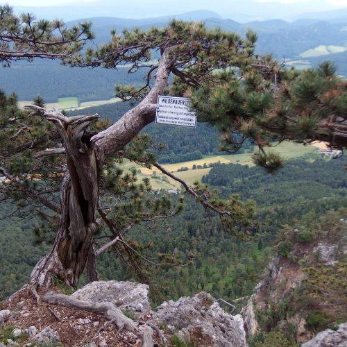 hohe wand mountains in austria - via ferrata