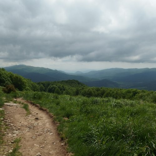 bieszczady mountains national park in poland - polonyna