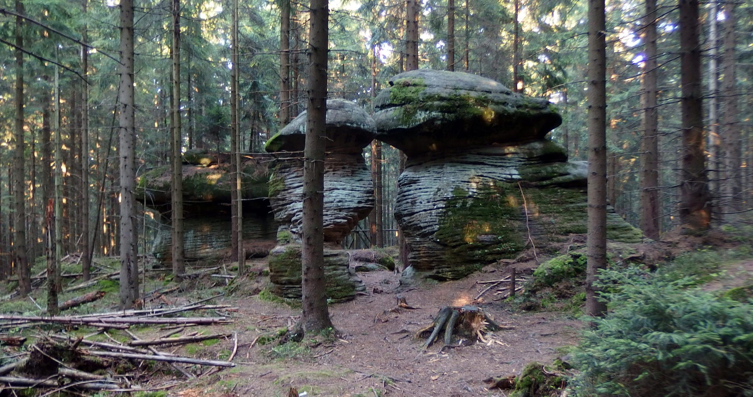 Mushroom Rocks in Stołowe Mountains National Park