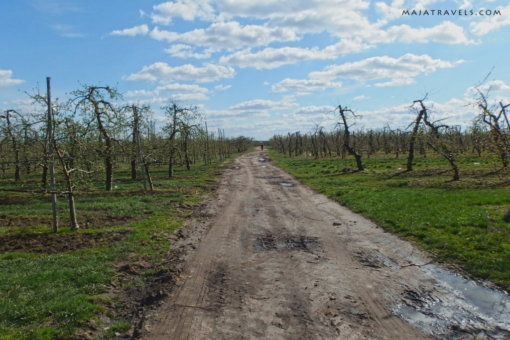 bicycle route warsaw czersk warka