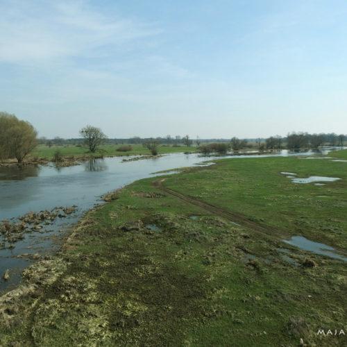 mazovia (mazowsze) in poland - river