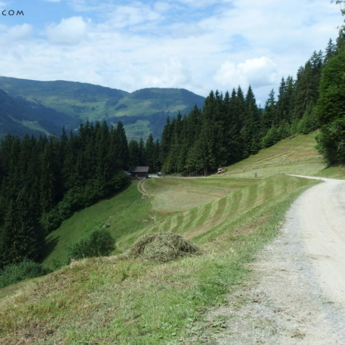 kitzbuhel alps biking
