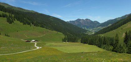 kitzbuhel alps alpbach summer