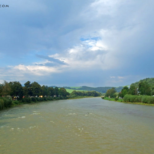 Dunajec river in summer