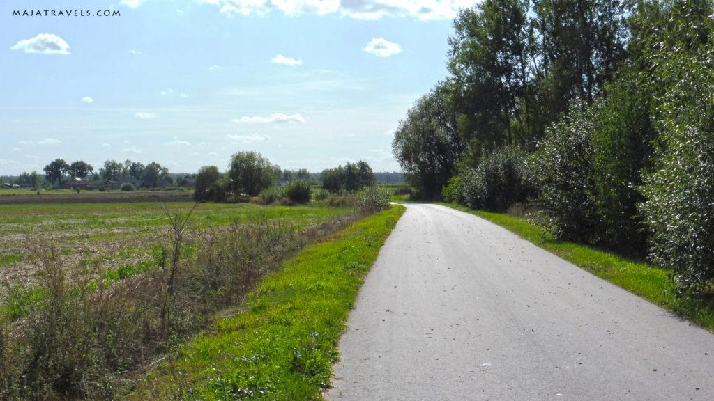 wiejska droga, zielona 7