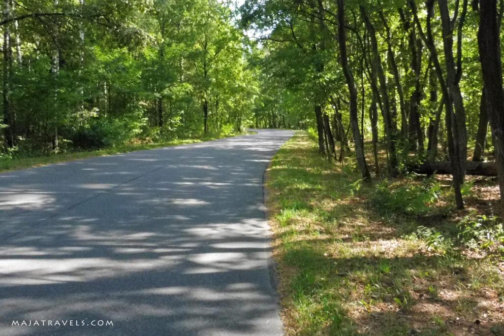 leśna droga, zielona 7