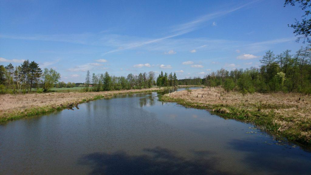 rzeka fiszor
