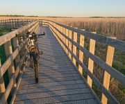 Obstacle course in Narew National Park or floating platforms, me and a bike