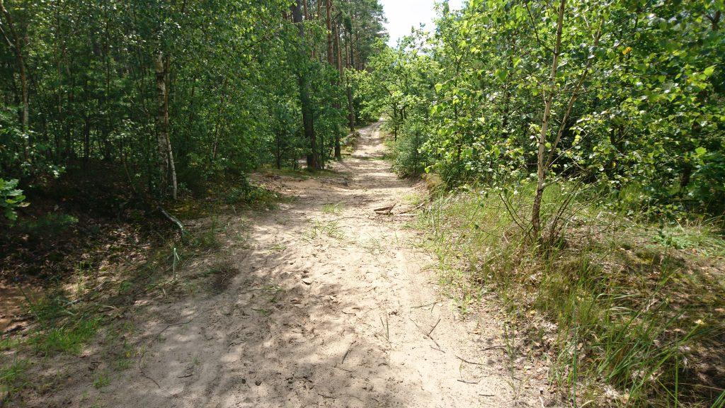 lasy chotomowskie, krwawa pętla