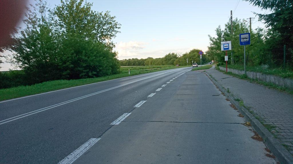 kampinoski park narodowy na rowerze, krwawa pętla