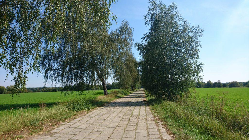 nadbużański szlak rowerowy, droga w wygodzie