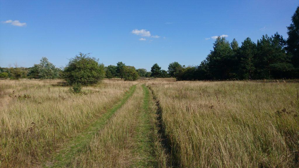 ścieżka wzdłuż rzeki bug, nadbużański szlak rowerowy