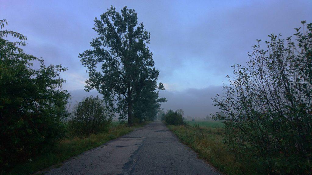 nadbużański szlak rowerowy, droga asfaltowa
