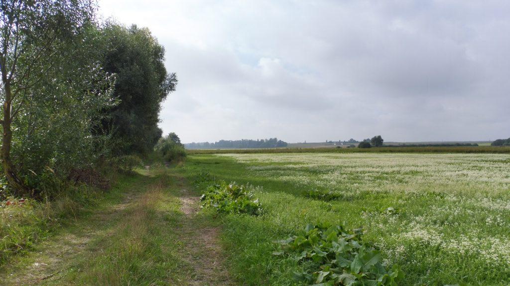 nadbużański szlak rowerowy, droga polna