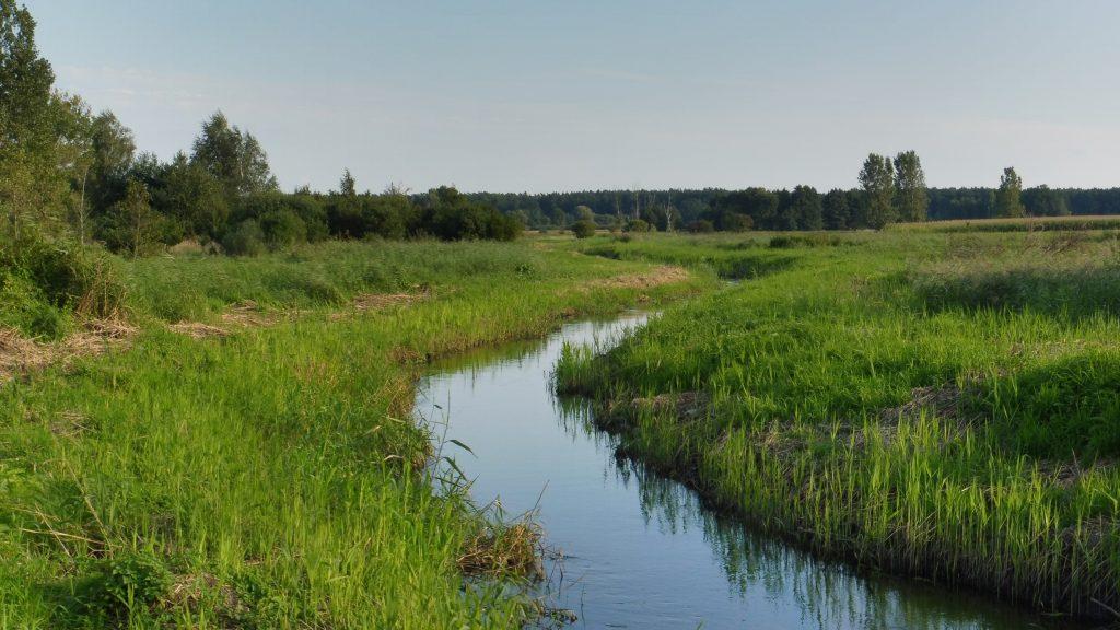 rzeka uherka