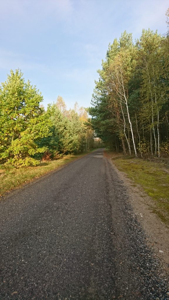 wzdłuż bugu trasa rowerowa