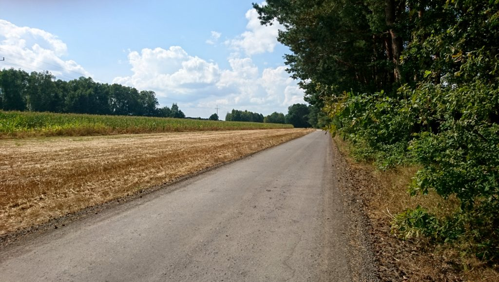 wzdłuż rzeki rządza trasa rowerowa