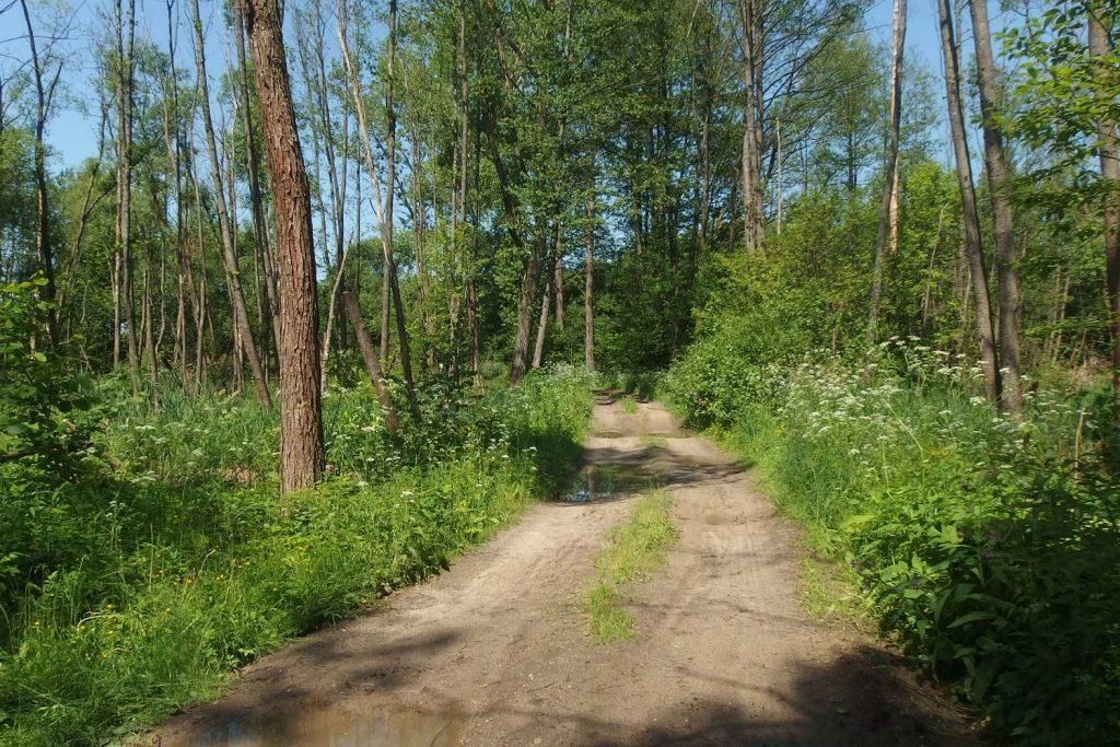 siedlce warszawa trasa rowerowa