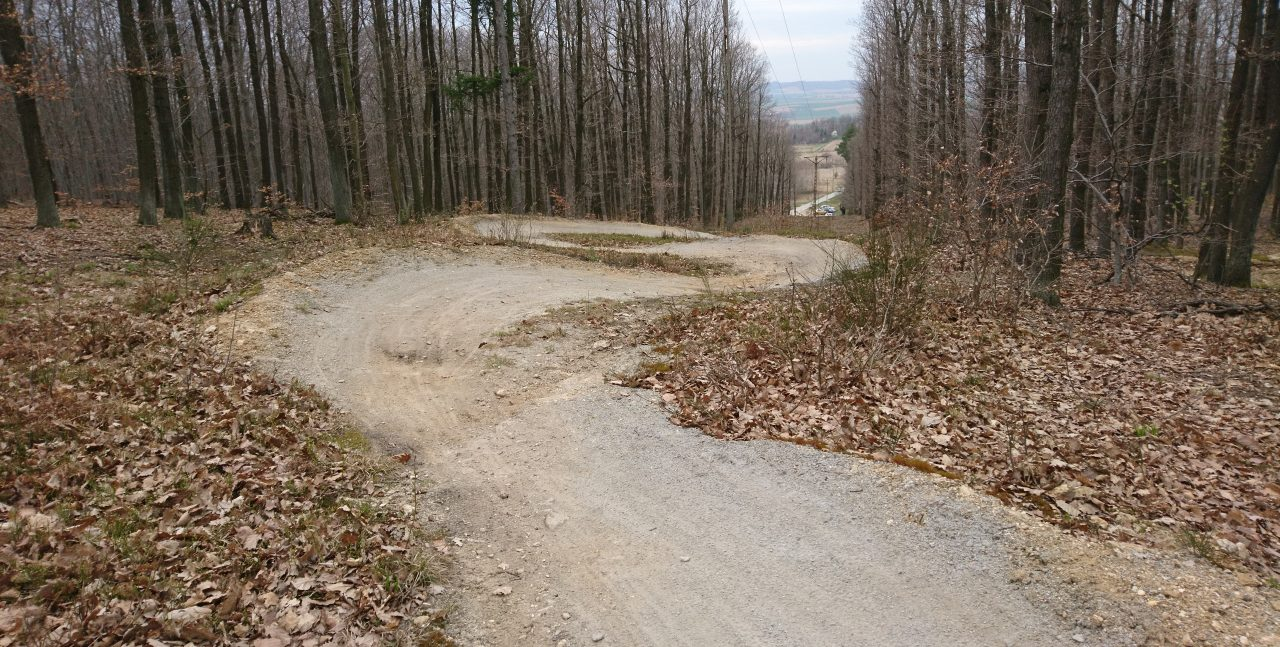 single track strzelin, S1