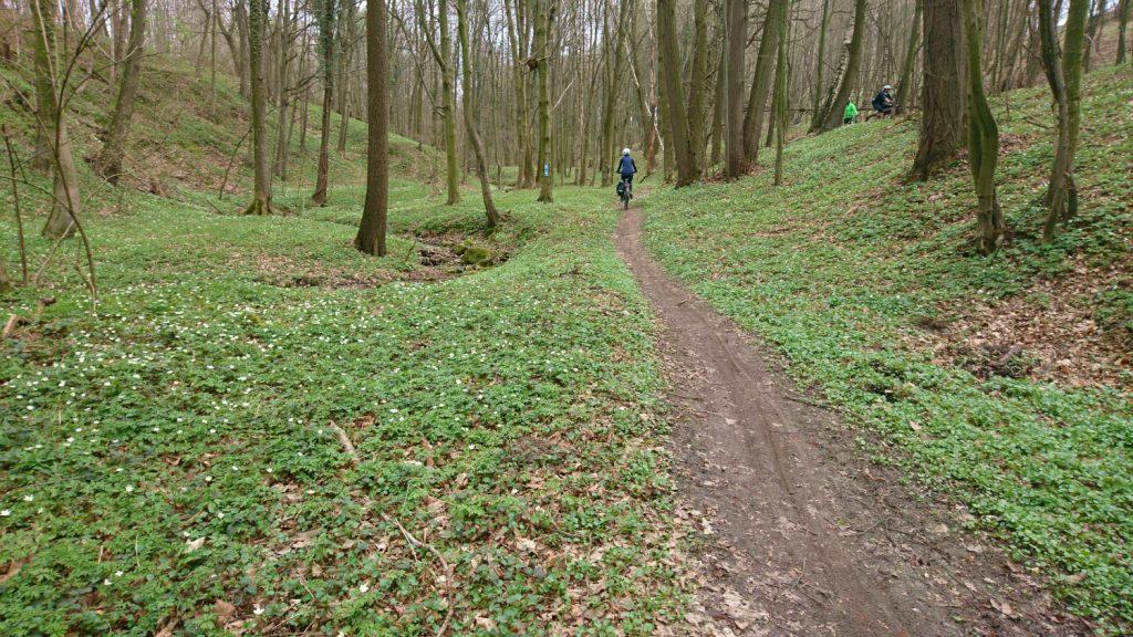 strzelin hills