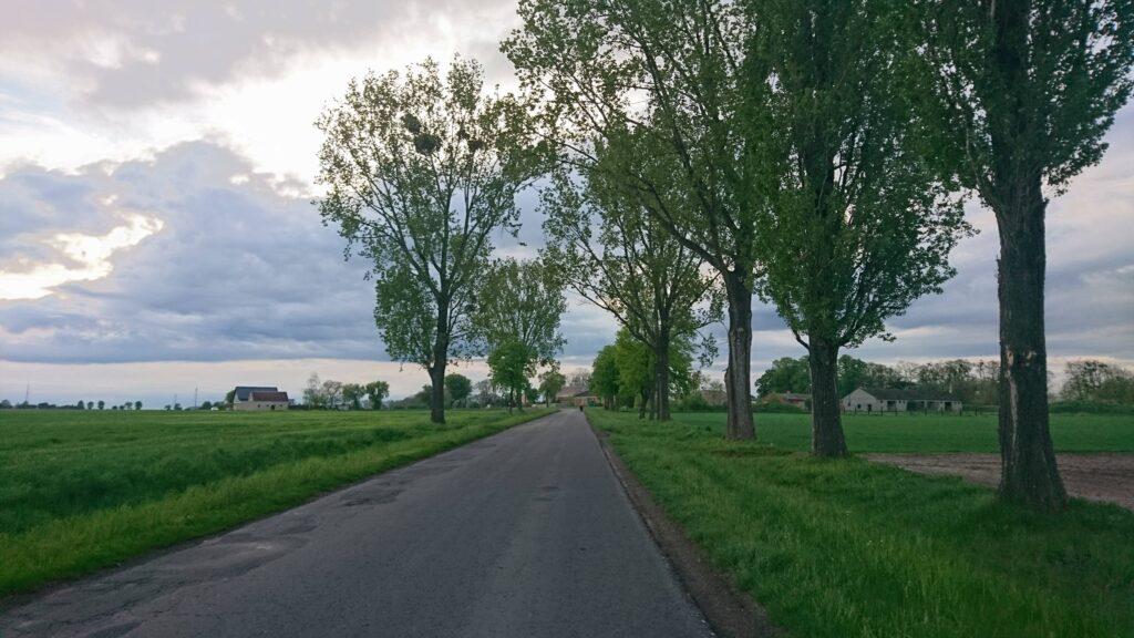 szlak rowerowy r9, bartoszewice