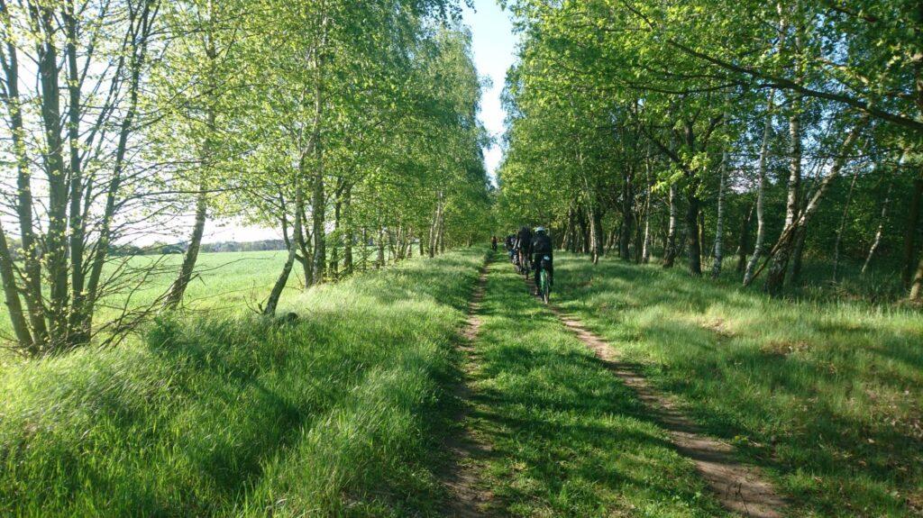 wielkopolski park narodowy na rowerze