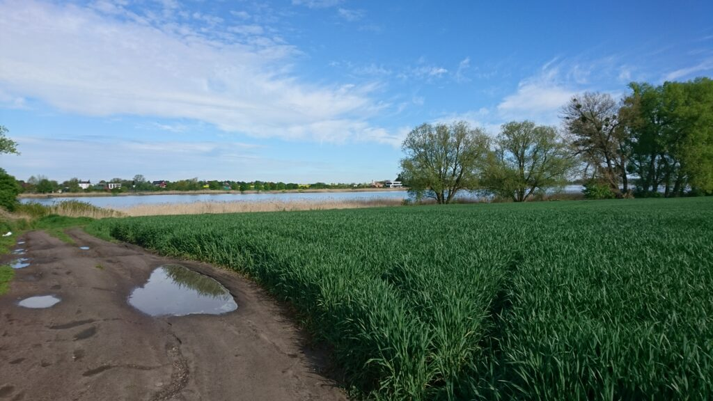 bytyń lake