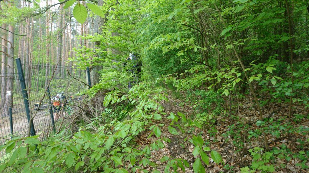 hiking trail to lake lutomskie