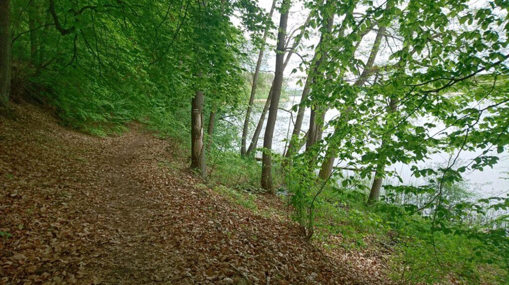 hiking trail by lake lutomskie