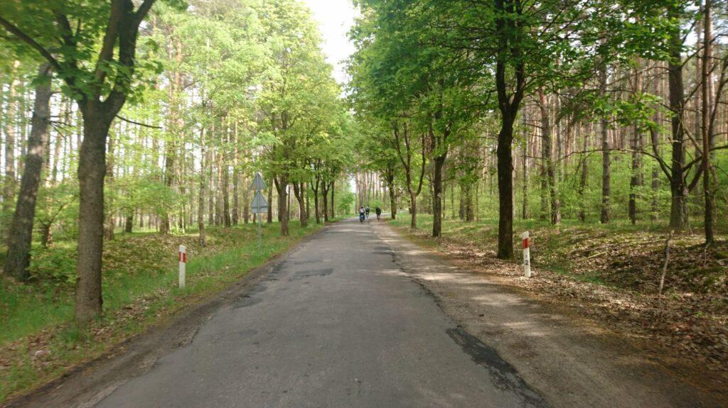 okolice krzyża wielkopolskiego na rowerze
