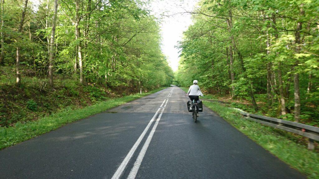 droga asfaltowa, okolice ińskiego parku krajobrazowego