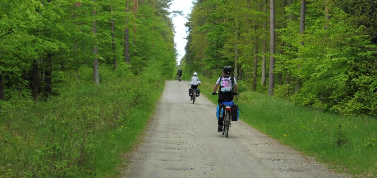 okolice łęczyna na rowerze