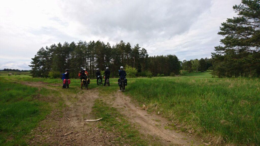 droga polna, okolice ińskiego parku krajobrazowego