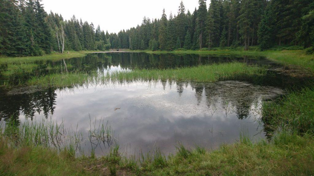 lake bedrichov