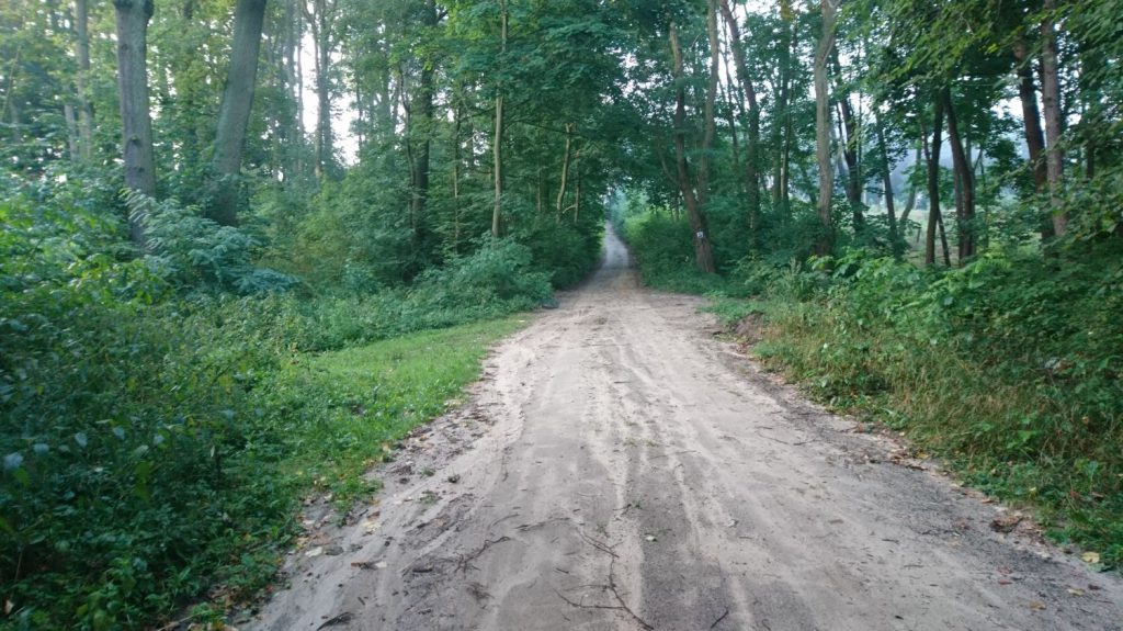 warta gravel route