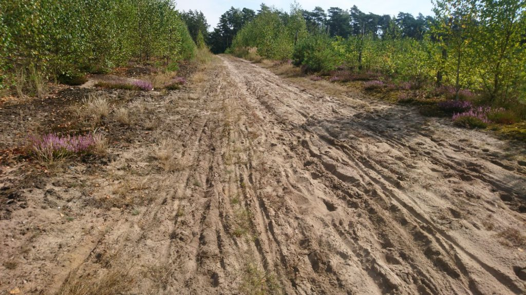 warta gravel route, sand